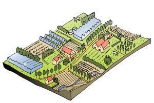 boomkwekerij, glastuinbouw, treeport, zundert